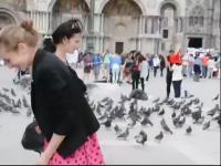美女与鸟 在线观看