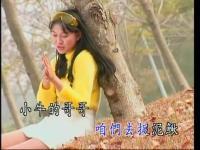 视频标签:金典歌曲djdj中文舞曲高清美女热
