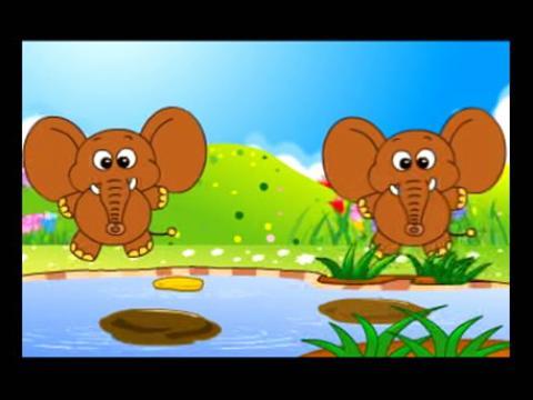两只小象_两只小象分享展示
