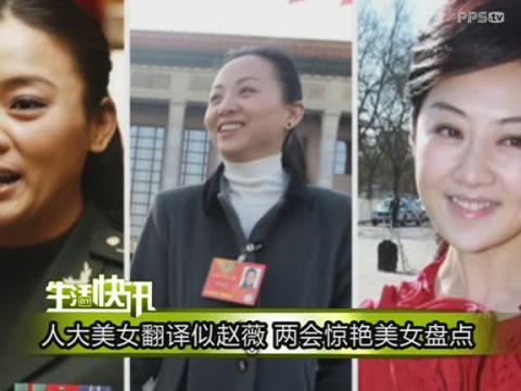两会美女翻译张京 在线观看