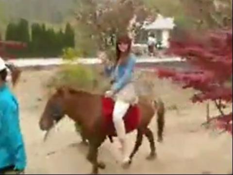 美女骑小马 在线观看