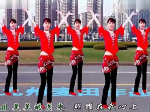 惠汝广场舞-醉月亮 广场舞蹈教学视频