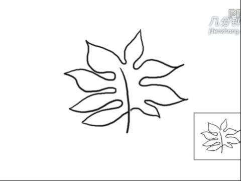 简笔画植物篇之叶子(六)