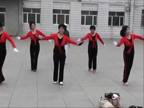 南岔广场舞 简单广场舞教学视频