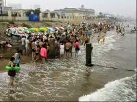型水母高温天消暑人群骤增