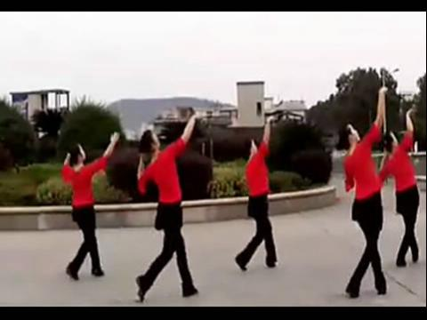 动动广场舞——醉月亮