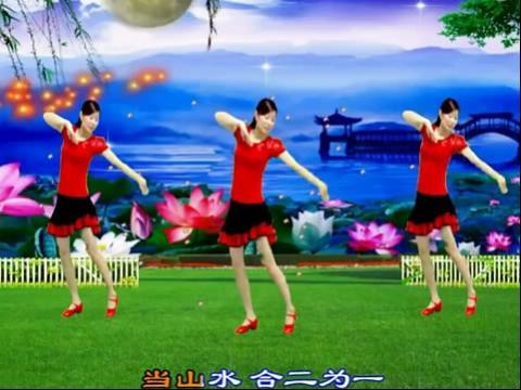 2013最新广场舞 《以爱相宜》
