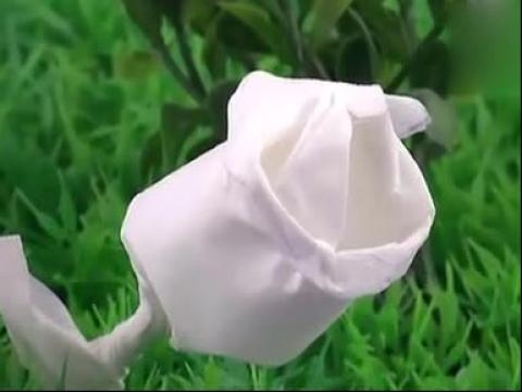 如何用餐巾纸折玫瑰花.mp4