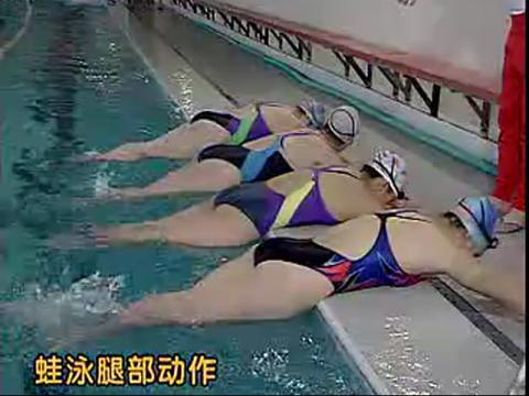 《学游泳》 游泳教学视频
