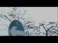 经典吻戏《欠爱》激情吻戏床戏片段