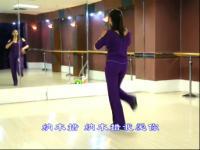 糖豆广场舞课堂 频道:广场舞++
