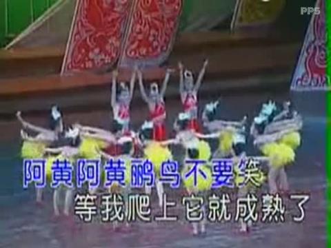 幼儿舞蹈视频 儿童舞蹈