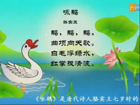 幼儿教育古诗朗诵之《咏鹅》
