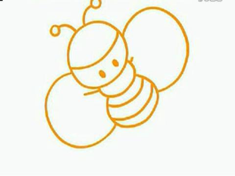 花园蜜蜂简笔画内容图片展示