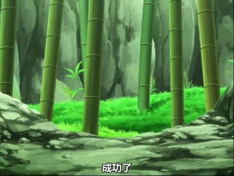 宠物小精灵XY 第11集