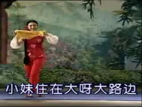 花鼓戏: 《瓜子红》