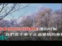 【音乐天堂】2013最新伤感图片