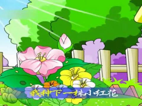 小红花 幼儿园 儿歌 歌曲