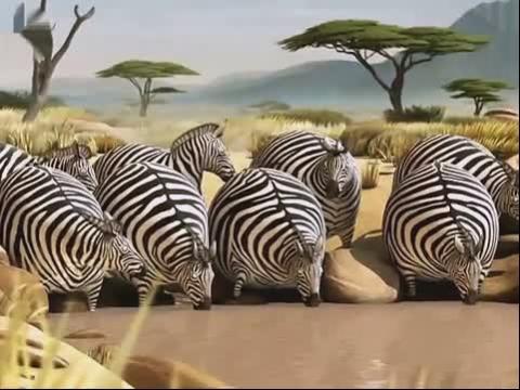 假如动物界都是胖子_视频在线观看-爱奇艺搜索