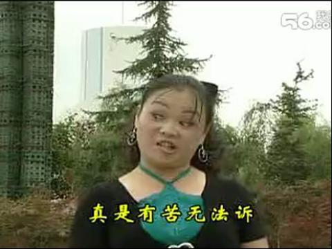 云南山歌电视剧毛家超