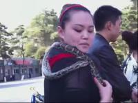 视频添加到我的频道 新版葫芦兄弟与美女蛇的故事普