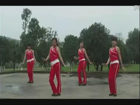 2012广场舞 卫东美女广场舞