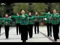 紫蝶广场舞 花香情歌歌词字幕;动作分解