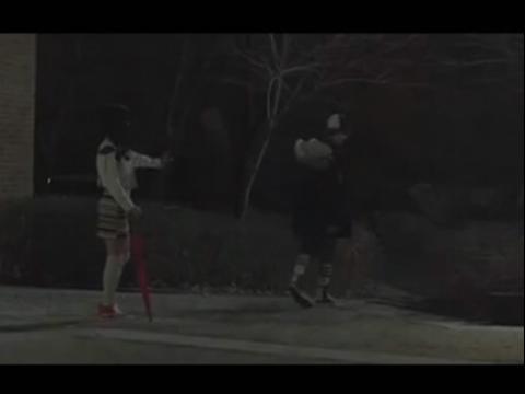 狼与美女 剧情版2 中文版――exomv感人至深