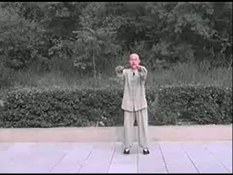 85式杨式太极拳 20白鹤亮翅