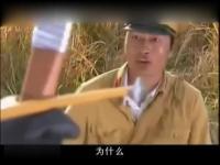美女热舞 高清 频道:焦点 小妞妞