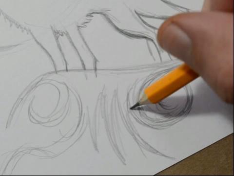 狼的画法铅笔画图片大全