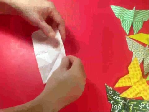 折纸大全◆怎样折纸非洲蝴蝶 昆虫折法教程视频